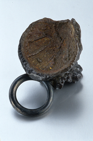 Jewel fossil ring